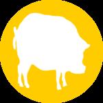 swine-emulsifier